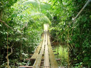 Costa Rica Ecotour